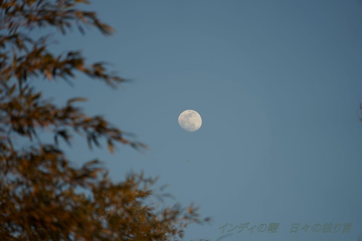 snap-Moon20190217