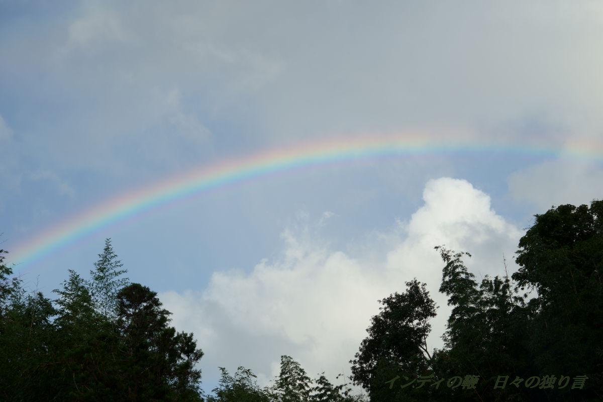 snap-rainbow20190908